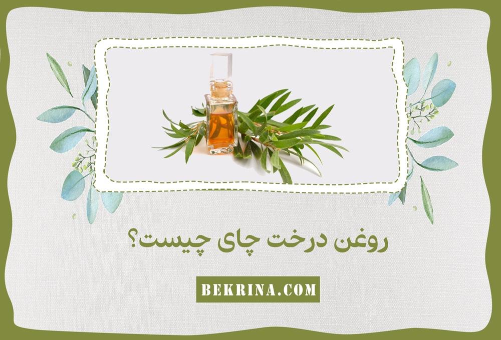 روغن درخت چای چیست